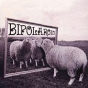 Bipolaroid, 'Transparent Make-Believe'
