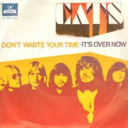 The Cats, 'Don't Waste Your Time'