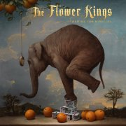 The Flower Kings, 'Waiting for Miracles'