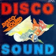 'Disco Sound (Hits in Instrumentalfassung)'